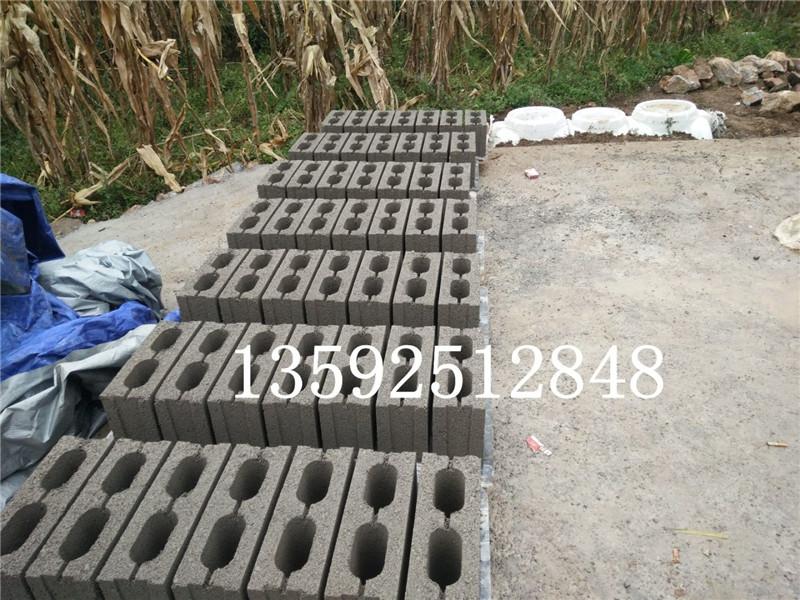 贵州六盘水5-15多孔空心免烧砖机生产线