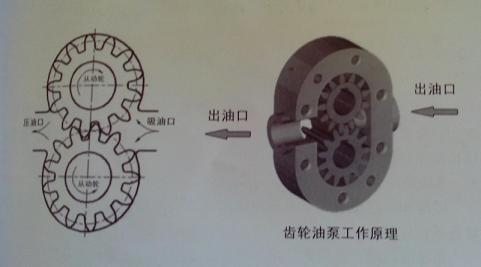 砖机齿轮泵内部构造图